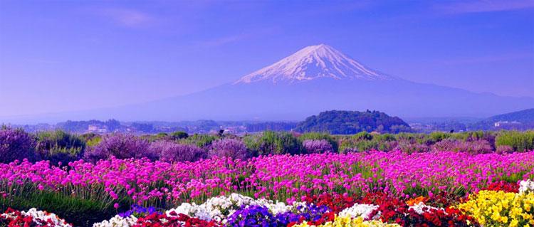 Giappone miniguida geografia clima citt arte viaggi - Foto della bandiera del giappone ...