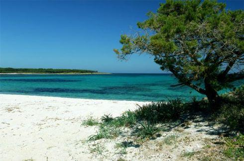 Budoni tanaunella pineta spiaggia di sabbia bianca e for Budoni mare